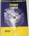 Lank Vladimír, Vondra Miroslav - Fyzika v kostce