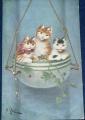 Koťata - stará umělecká pohlednice