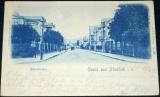 Německo - Neustadt Albertstrasse 1899