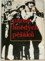 Biman Stanislav, Cílek Roman - Partie hnědých pěšáků