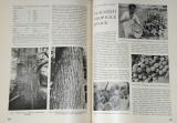 Naši přírodou III. ročník, 1939 - 1940