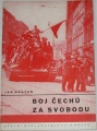 Hostáň Jan - Boj Čechů za svobodu