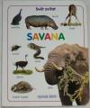 Svět zvířat - Savana