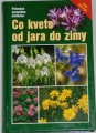 Dreyerovi Eva a Wolfgang - Co kvete od jara do zimy