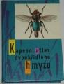 Javorek Vladimír - Kapesní atlas dvoukřídlého hmyzu