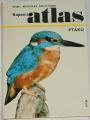 Bouchner Miroslav - Kapesní atlas ptáků