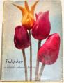 Vaněk Vlastimil - Tulipány a ostatní cibulové květiny