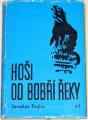 Foglar Jaroslav - Hoši od Bobří řeky