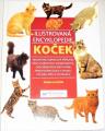 Rixon Angela - Ilustrovaná encyklopedie koček