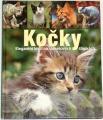 Kočky - Elegantní lovci na sametových tlapkách