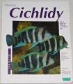 Zurlo Georg - Cichlidy