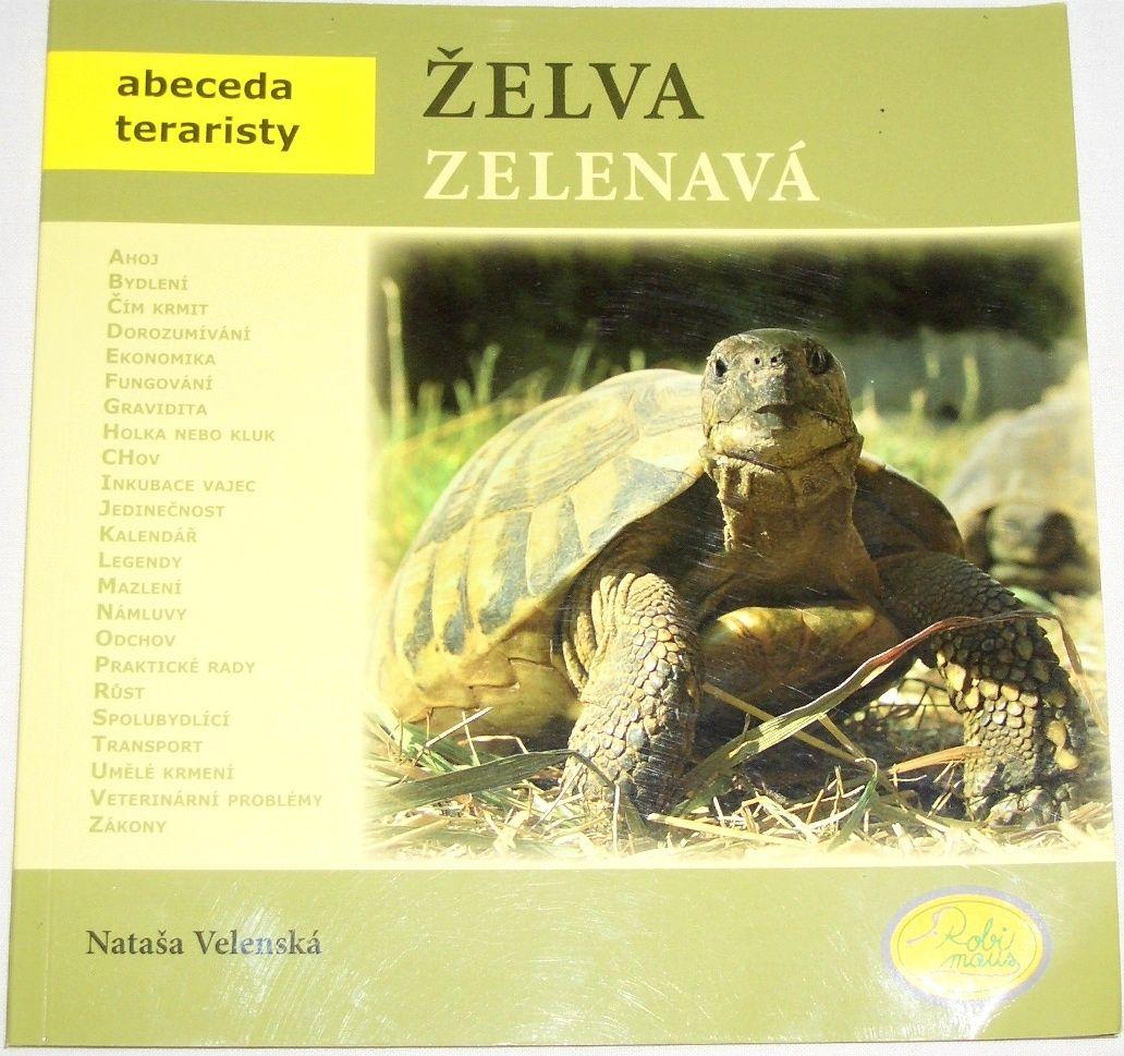 Velenská Nataša - Želva zelenavá