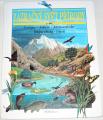 Vérilhac Florence - Zázračný svět přírody 2. díl