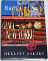 Asbury Herbert - Newyorské Gangy