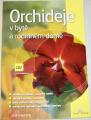 Sedláčková Eva - Orchideje v bytě a rodinném domě