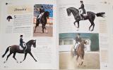 Pickeralová Tamsin - Encyklopendie koní a poníků