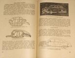 Šmolka, Hausman, Tůma - Základy motorismu