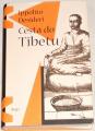 Desideri Ippolito - Cesta do Tibetu