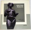 Maillol Aristide - Rozhovory o umění