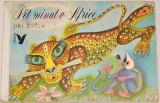 Žáček Jiří - Pět minut v Africe