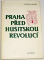 Mezník Jaroslav - Praha před husitskou revolucí