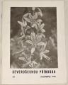 Severočeskou přírodou 24 - Co je Mercurialis longistipes a M. paxii?