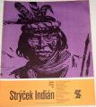 Frič Alberto Vojtěch - Strýček Indián