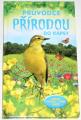 Průvodce přírodou do kapsy - květiny, stromy, ptáci, hmyz