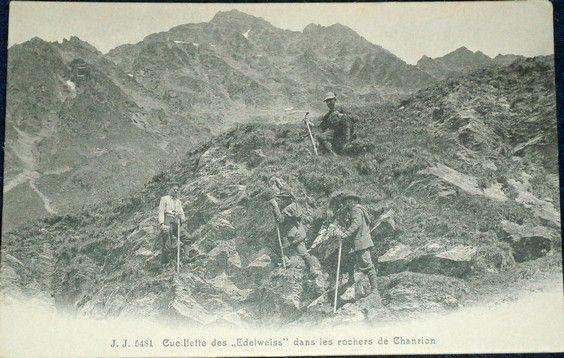 Alpy: sběrači protěží (Chanrion)