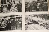 Dějiny druhé světové války 1939 - 1945 (svazek IX)