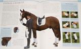 Micklem William - Příručka jízdy na koni
