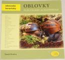 Protiva Tomáš - Oblovky: Plži čeledi Achatinidae
