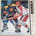 Turek Petr - Kniha o jihočeském hokeji