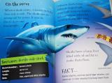 Snappy Sharks