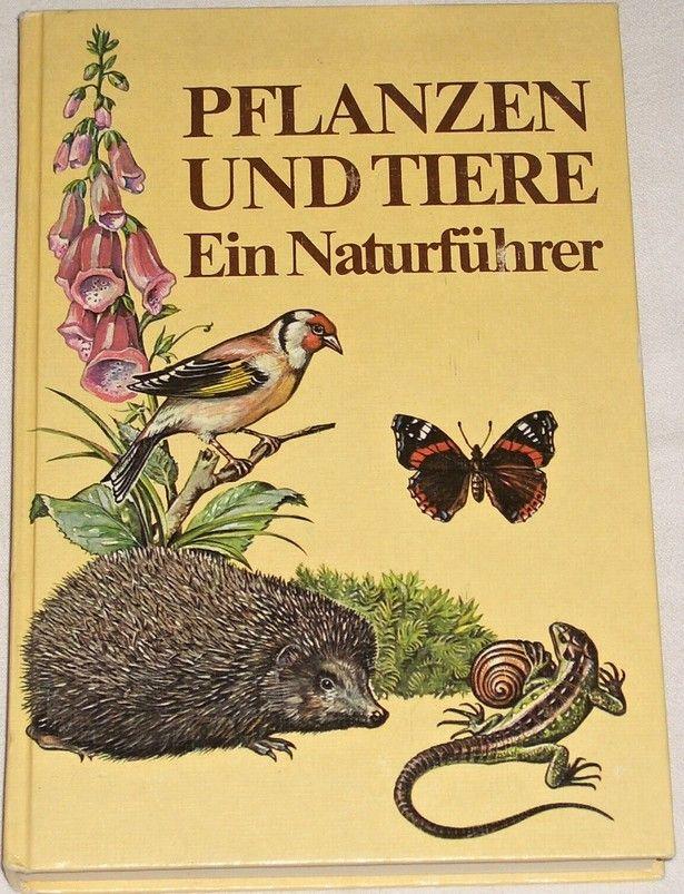 Pflanzen und Tiere - Ein Naturführer