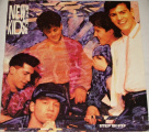 LP New Kids On The Block: Step by Step