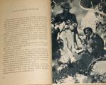 Verne Jules - Matej Šándor (Nový gróf Monte Christo)