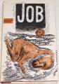 Strnad Jaroslav - Job
