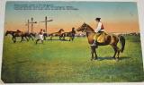 Maďarsko, Hortobágy: maďarští pastevci na koních (1915)