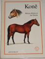 Kholová Helena - Koně