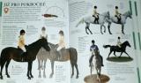 Hendersonová Carolyn - Jízda na koni