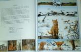 Rihová Susanne - Zvířata kolem nás
