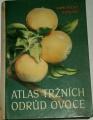 Kamenický K., Kohout K. - Atlas tržních odrůd ovoce