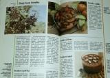 Lánská Dagmar - Plané rostliny v kuchyni