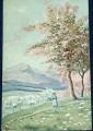 Rozkvetlé stromy  r. 1930