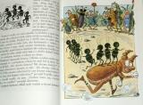 Sekora Ondřej - Chrobák Truhlík